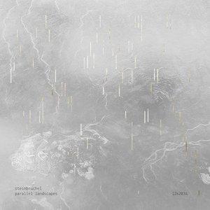Image for 'Parallel Landscapes'