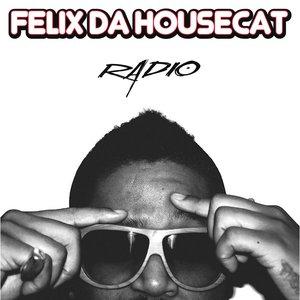 Image for 'Radio (Shinichi Osawa Remix)'