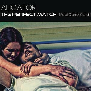 Image for 'The Perfect Match (Remixes)'