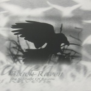 Image for 'The Solitude of Ravens'