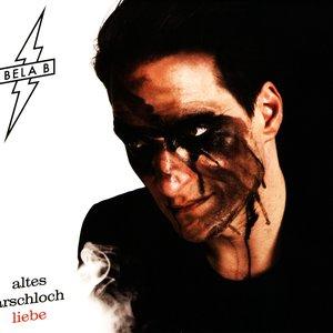 Image for 'Altes Arschloch Liebe'