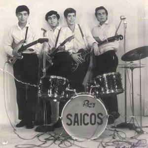 Bild för 'Los Saicos'