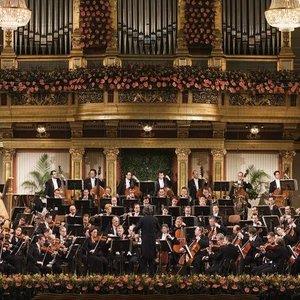 Bild für 'Orchestra of the Vienna Volksoper'