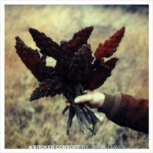 Bild för 'The Shape Leaves'