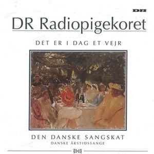 Image for 'Det Er I Dag Et Vejr'