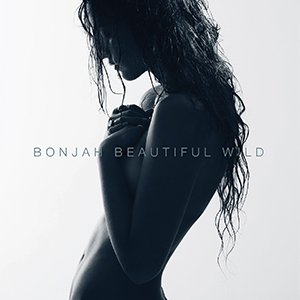 Image for 'Beautiful Wild'