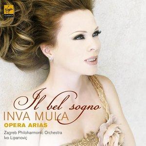 Image pour 'Il Bel Sogno - opera arias'