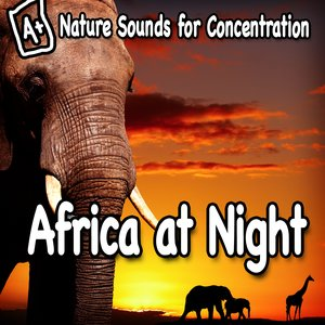 Bild für 'Nature Sounds for Concentration – Africa at Night'