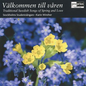 Image pour 'Traditional Swedish Songs Of Spring And Love'
