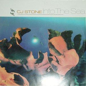 Imagem de 'Into the Sea'