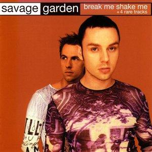 Image for 'Break Me Shake Me'
