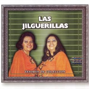 Image for 'Tesoros Musicales'
