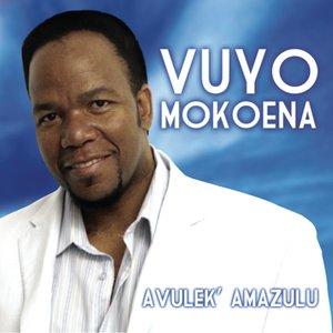 Image for 'Avulek' Amazulu'