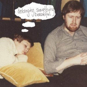 Image for 'Destroying Something Beautiful'
