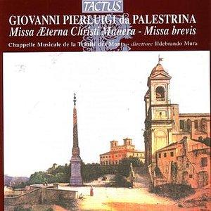 Image for 'Giovanni Pierluigi da Palestrina: Missa Aeterna Cristi Munera - Missa Brevis'
