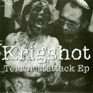 Image for 'Terroristattack EP'
