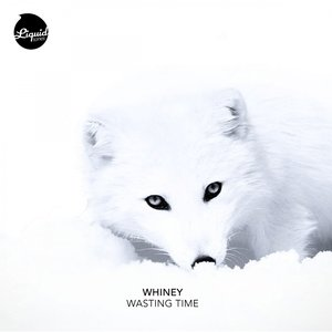 Image for 'Wasting Time'