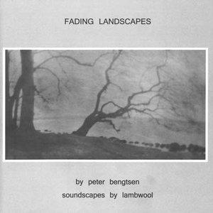 Image for 'Fading Landscapes'
