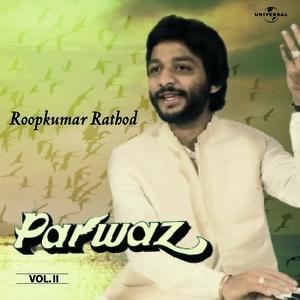 Image for 'Parwaz  Vol. 2  ( Live )'
