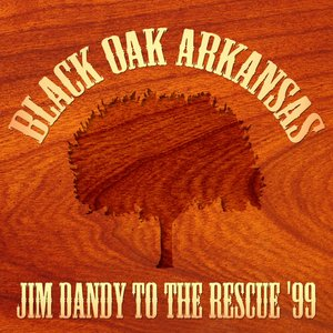 Image for 'Jim Dandy To The Rescue ´99'