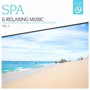 Image pour 'SPA & Relaxing Music, Vol. 7'