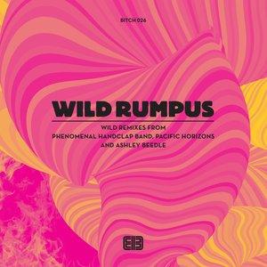 Imagen de 'Wild Remixes'
