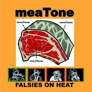 Image for 'meaTone'