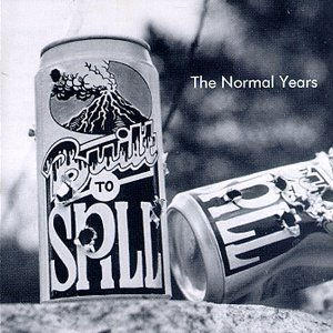 Image for 'The Normal Years'