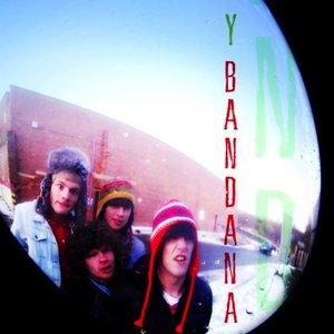 Image for 'Y Bandana'