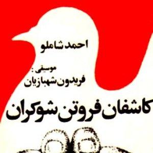Image for 'Jakh Emrooz Az Madar'