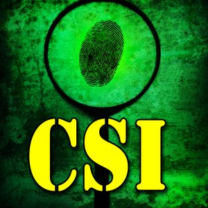 Image for 'C S I'