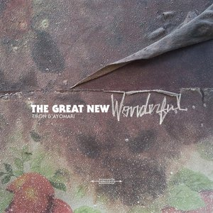 Image for 'The Great New Wonderful'