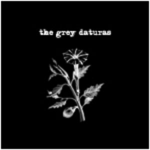 Image for 'The Grey Daturas'