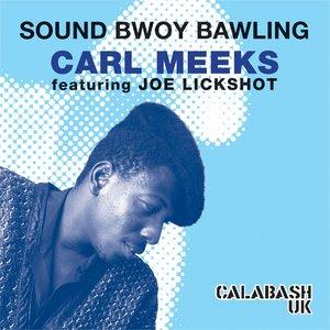 Image for 'Bawling Dub (feat. Joe Lickshot)'