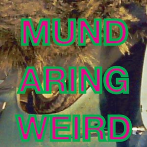 Image for 'Mundaring Weird'