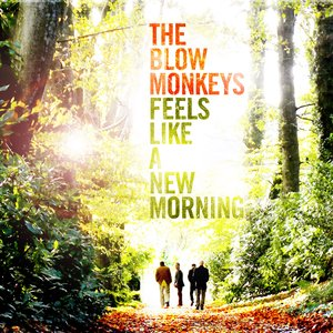 Image pour 'Feels Like A New Morning'