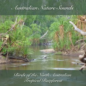 Image for 'Birds of the North Australian Tropical Rainforest'