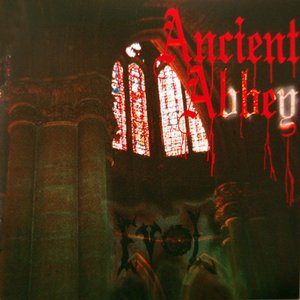 Image for 'Ancient Abbey (Thunder Remix)'