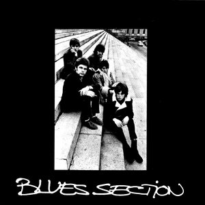 Image for 'Blues Section'