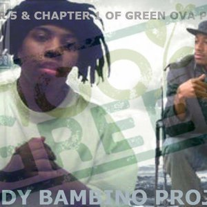 Image for 'The Shady Bambino Project'