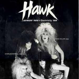 Image for 'Hawk'