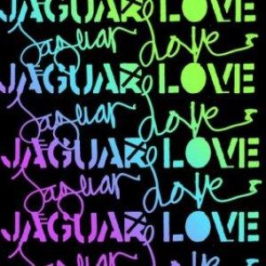 Image for 'Jaguar Love'