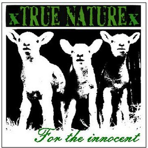 Image pour 'For The Innocent'