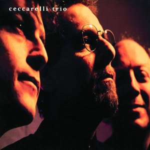 Image for 'Ceccarelli Trio'