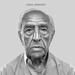 Image pour 'Konvolut'