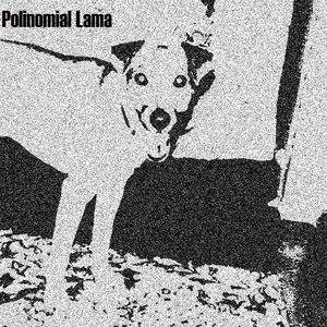 Bild för 'Polinomial Lama'