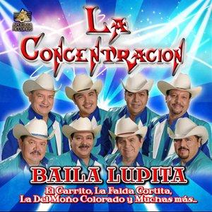 Image pour 'Grupo La Concentracion'