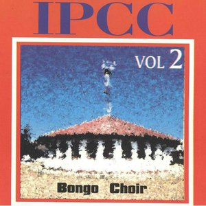 Image for 'Bongo Choir, Vol. 2'