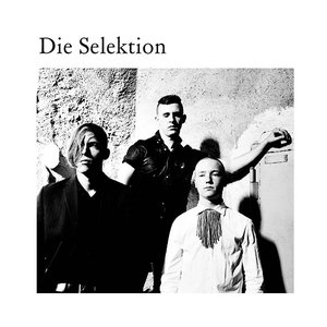 Image for 'Die Selektion'