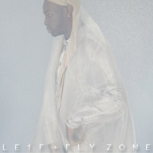 Image for 'Fly Zone'